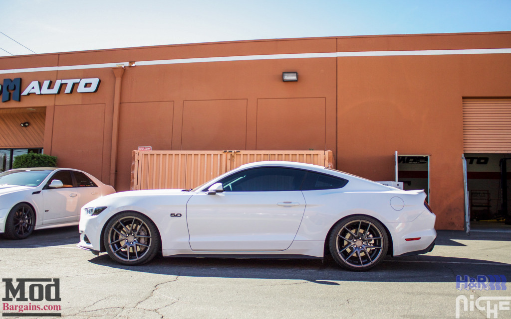 Ford_S550_Mustang_GT_HR_SuperSport_Niche_Targa_